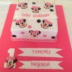 Mickey ve Minnie mouse (30)