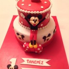 Mickey ve Minnie mouse (54)