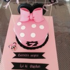 Mickey ve Minnie mouse (61)