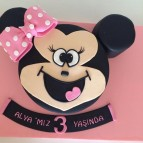Mickey ve Minnie mouse (82)
