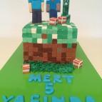Minecraft (4)